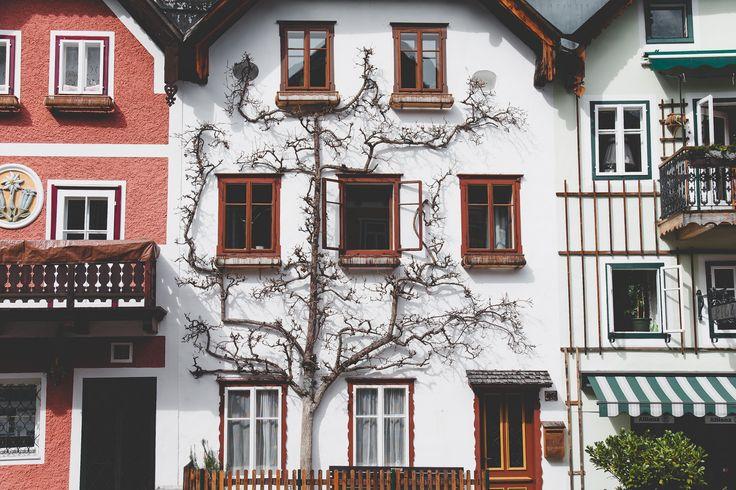 https://flic.kr/p/Vbes46   Ejerlejlighed i København   Prisen på en ejerlejlighed i København er steget med 9,3 pct – det koster i dag 3,2 mio. kr. At investere i en ejerlejlighed i København. Boligdeal.dk berører emnet i deres seneste blogindlæg: www.boligdeal.dk/blogs/prisfesten-pa-ejerlejligheder-fort...   En bolighandel kan være en kompliceret proces, hvorfor de fleste i den forbindelse søger rådgivning. I Indlægget kan du se de forskellige rådgiver funktioner, som du kan vælge ud fra…