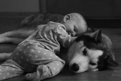 Sweet love #husky #baby