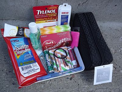 Car Survival Kit - Thanks for bus drivers or carpoolers.: New Mom Gifts Ideas, Cars Survival Kits, Mint Nails, New Mom Gifts Baskets, Darling Doodles, Survival Kits Gifts, Gifts Baskets Ideas For Mom, Mom Survival Kits, Cars Kits