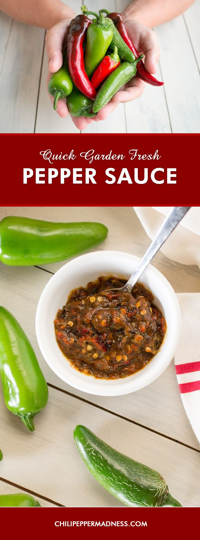 Quick Garden Fresh Pepper Sauce - This is easy to make. Fresh chili peppers picked right from the garden, roasted, then processed with garlic, honey and oil. Perfect for smothering chicken or salmon dishes.