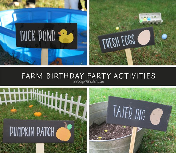 farm birthday activities