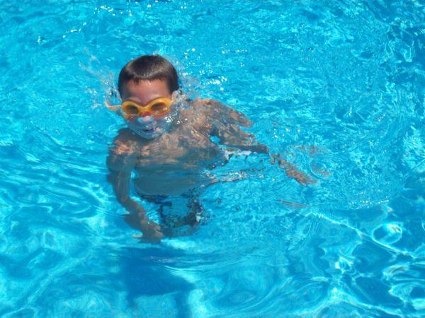 How Much Do Above Ground And Inground Swimming Pools Cost? Kosten Für Einen  Oberirdischen ...