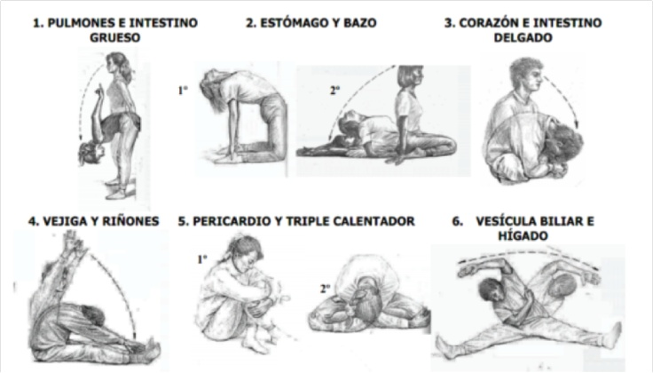 shizuto masunaga meridian exercises pdf