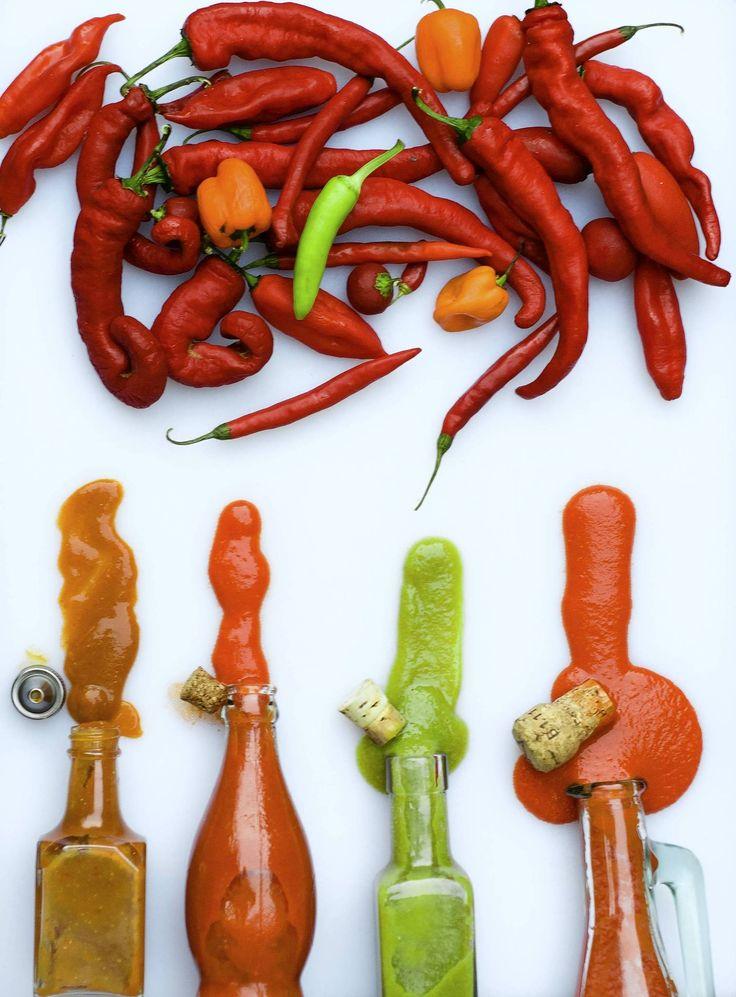 From the harvest: hot sauce - Csiliszósz: Teszi: körülbelül 3 csésze: £ 1 chili paprika (piros vagy zöld), talpas és az apróra vágott; 1/2 csésze fehér ecet 1/2 csésze almaecetet; 5 dkg (1 közepes) apróra vágott paradicsom (használjon piros paradicsom piros mártással és sárga paradicsom zöld); 2 evőkanál só kóser; 1 teáskanál cukor; 2 nagy gerezd fokhagyma, apróra vágva;