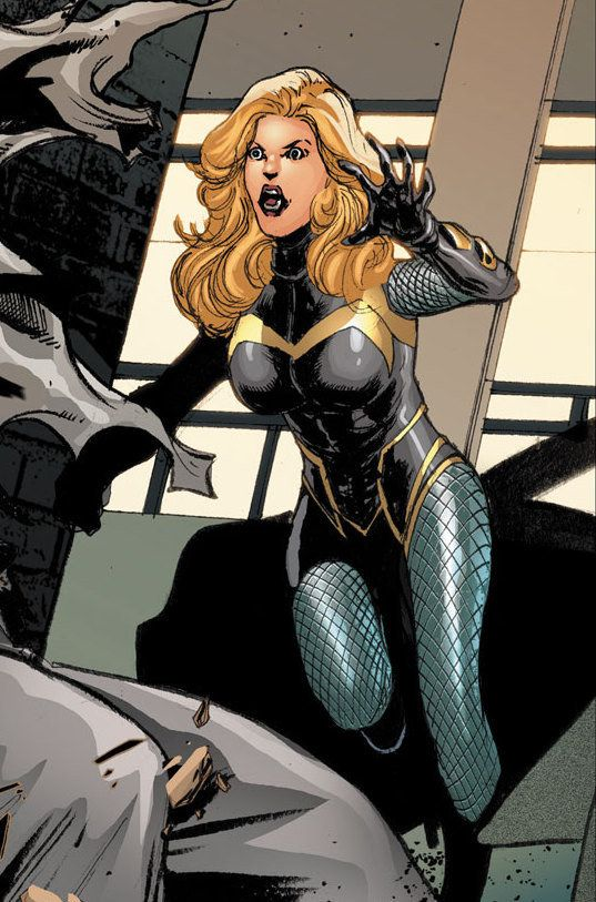 Which Member Of The Justice League Are You? You got: Black Canary Black Canary is a strong, yet conflicted, member of the Justice League. At times, Black Canary has serious doubts about whether she is making the right decision or doing the right thing. Like you, Black Canary usually makes the right call and contributes to the greater good.