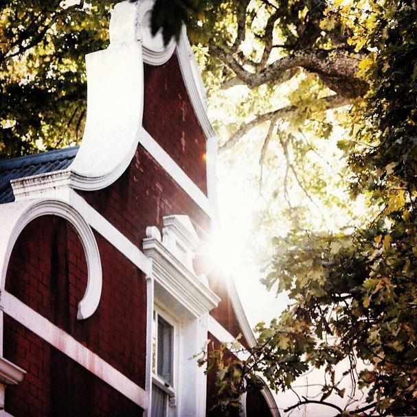 Thin you know where this is? #cape #dutch #gable #stellenbosch #sun #burst #leaves #oak #tree