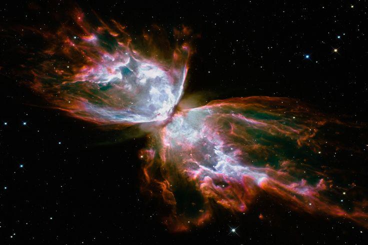 'Butterfly Nebula (Hubble Space Telescope)' by NASA Canvas ...