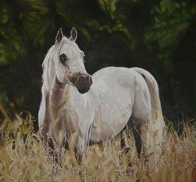 Oil on canvas www.lynettelamprecht.com