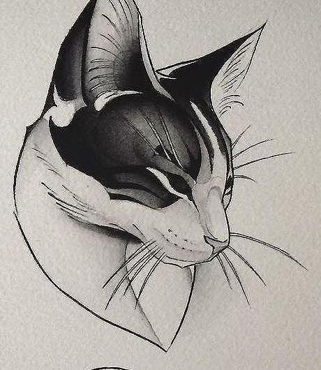 Эскиз татуировки с кошкой