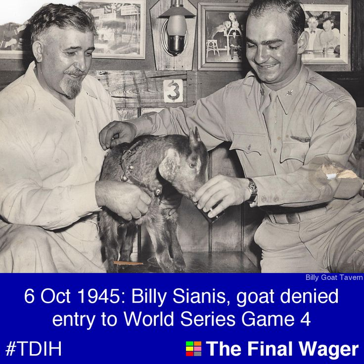 """6 Oct 1945: Billy Sianis, goat """"curse"""" Cubs ~ Curse is GONE, 2016!"""