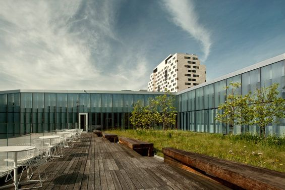 Peg Woolsey Roofmeadow2 Landscape Design Landscape Architecture Sedum Roof