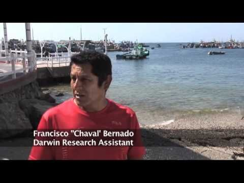 Darwin Initiative  | Cornwall Campuses | University of Exeter
