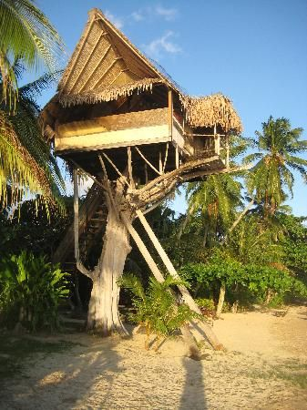 Tarariki treehouse, Moorea, French Polynesia... Tree fort for adults, I'm Sooo in!