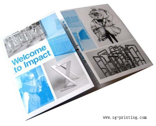 The 25+ best Leaflet printing ideas on Pinterest | Graphic ...