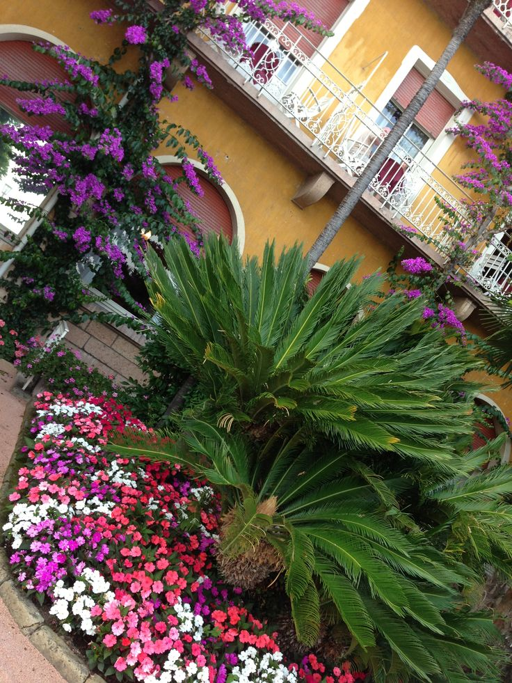 Photo by me Lake Garda Gardone Riviera- Italy #garden #flowers
