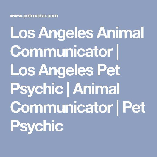 Los Angeles Animal Communicator   Los Angeles Pet Psychic   Animal Communicator   Pet Psychic