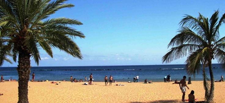 Quittez le froid et la grisaille de l'Europe et envolez vous vers la douceur et le soleil de Tenerife grâce aux offres promotionnelles de Sunjets.be!