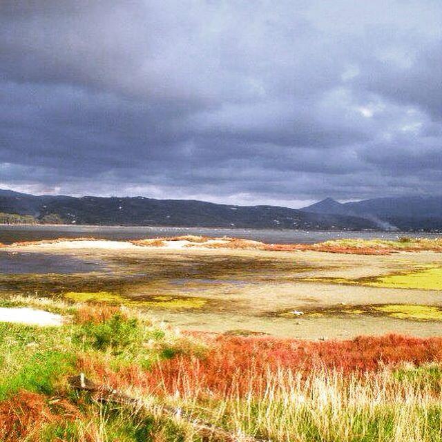 Beatiful colors #lagoon