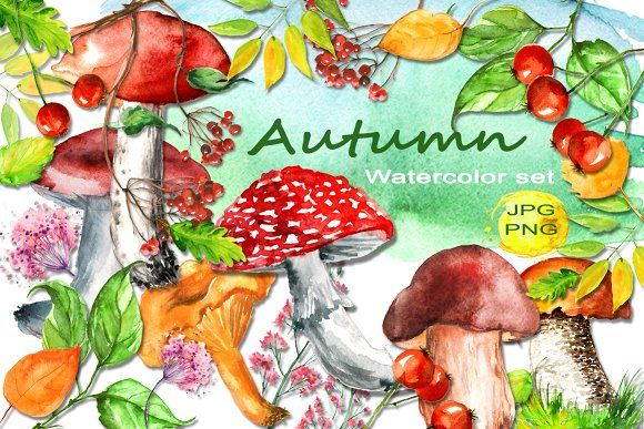 Watercolor set Autumn by helgafo on @creativemarket