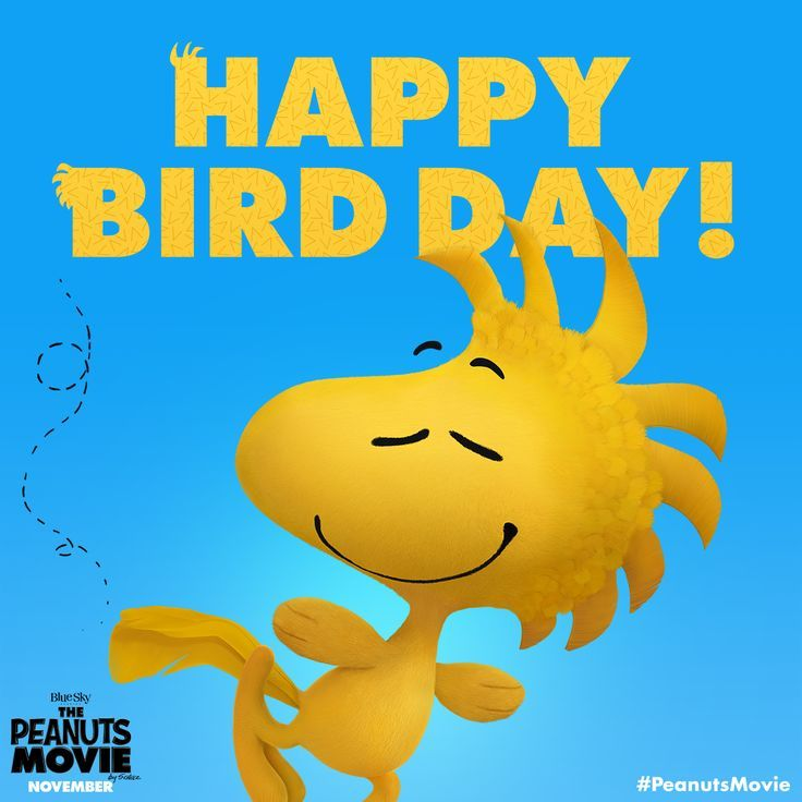 Soar To New Heights With Our Good Friend Woodstock Happy Bird Day From The Peanuts Movie Snoopy Funny Happy Bird Day Happy Birthday Quotes Funny