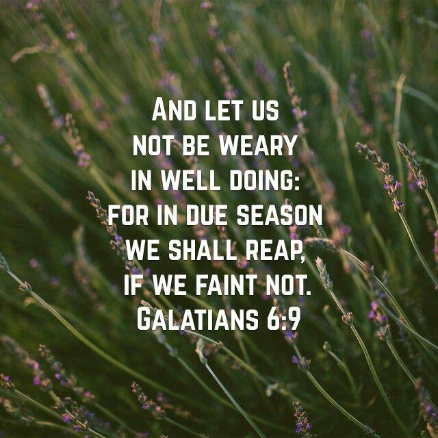Galatians 6:9 (KJV)