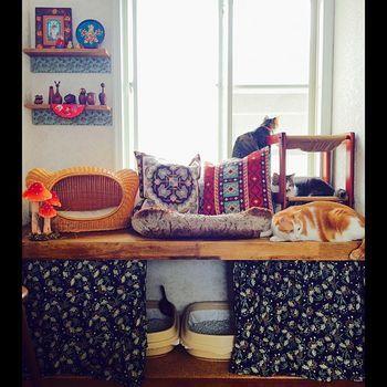 すっかり猫ちゃんたちのくつろぎに場になっている、棚下をトイレスペースに。なじんだ場所におトイレを設置するのはいいアイデア。カーテンをつければ目立ちません。