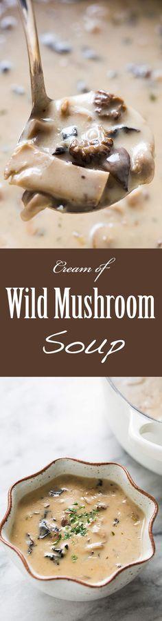 wild mushroom soup made with dried wild mushrooms, fresh mushrooms ...