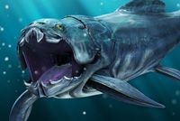 Atteigant de 8 à 10 mètres et pesant jusqu'à 5 tonnes, le Placoderme Dunkleosteus était le plus grand prédateur de son temps.