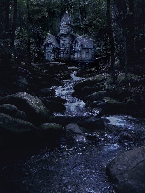Forest House, The Enchanted Wood