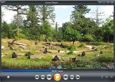 Ο Zoom Player είναι ένας ισχυρός player πολυμέσων και DVD player front-end. Έχει σχεδιαστεί να είναι απλό στη χρήση ενώ παράλληλα εμπεριέχει εξαιρετική δυναμική και ευελιξία ειδικά όταν χρησιμοποιείται στο μέγιστο των δυνατοτήτων του. Λειτουργεί με δύο τρόπους, παίζοντας οποιοδήποτε αρχείο που υποστηρίζεται από το DirectShow και περιλαμβάνει ακόμη και μια λειτουργία ειδικά για DVD. Παρέχει ειδικές λειτουργίες ζουμ για τη βελτίωση της ποιότητας με την εξάλειψη των overscan.