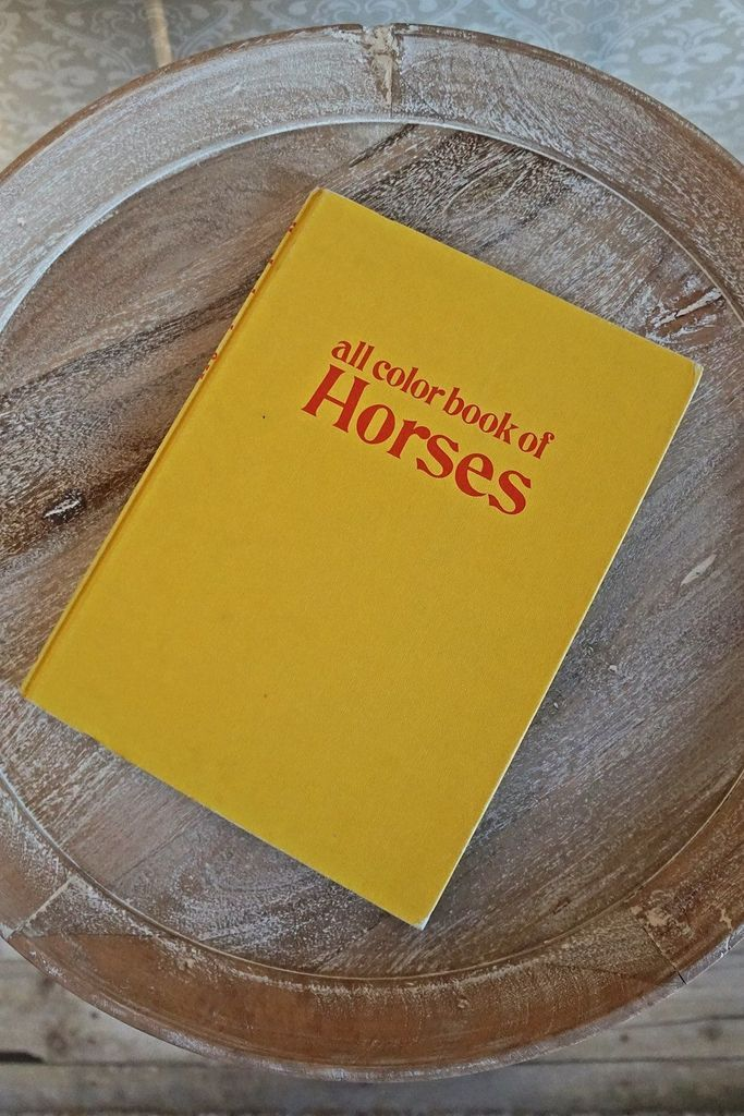 Vintage All Color Book Of Horses Coffee Table Book Coloring Books Coffee Table Books All The Colors