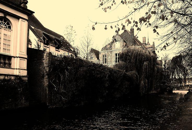 https://flic.kr/p/k83Ysg | Brugge    - Belgium  -  ph Amos Locati  2013