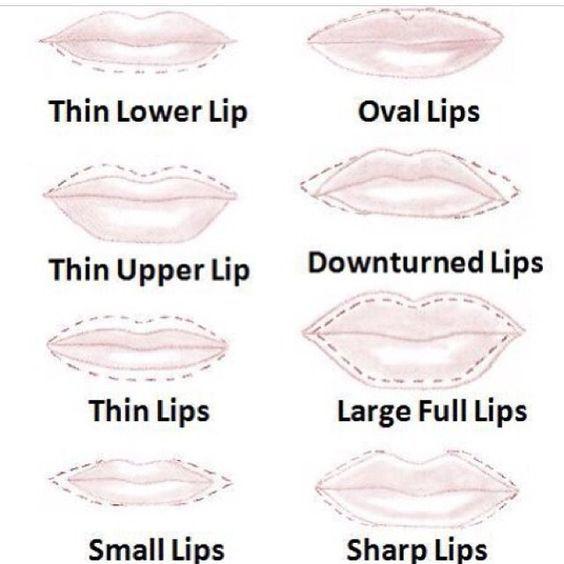 lip shape chart - Google Search