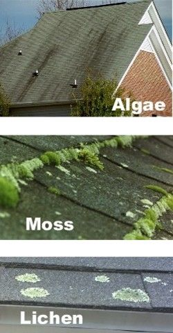 Roof-Be-Clean - roof cleaning product for roof stains due to roof algae, roof mold, roof mildew. Roof stain removed without harmful power washing. Shingle cleaning without harmful chemicals used by many roof cleaners.