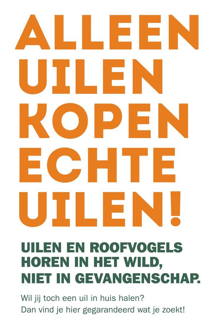 #alleenuilenkopenechteuilen http://www.vogelbescherming.be/site/index.php?option=com_content&view=article&id=804:alleen-uilen-kopen-echte-uilen&catid=99:onze-campagnes&Itemid=229