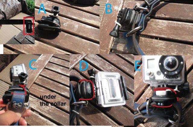 GoPro dog collar mount DIY