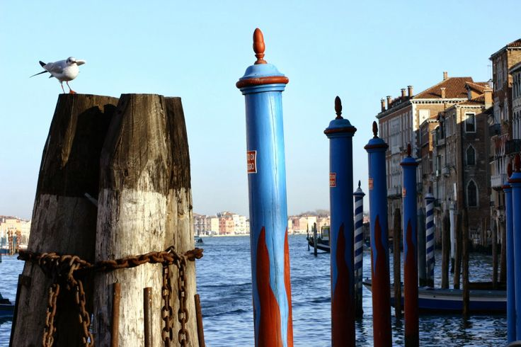 pieces of pics : good morning Venice