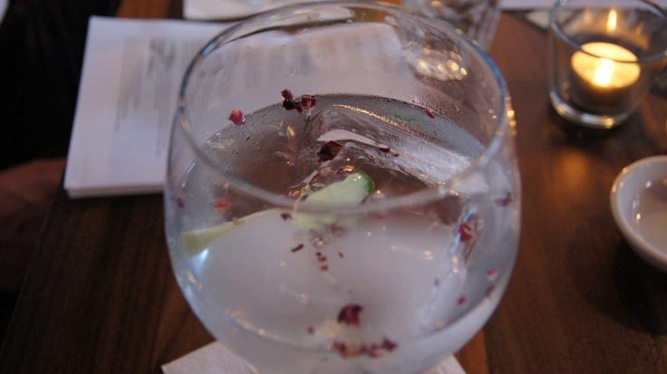 Hendrick's Gin & TonicGin Samples, Gin Tonic, Gin Club S, London Gin, Favourite Gin, Hendricks Gin