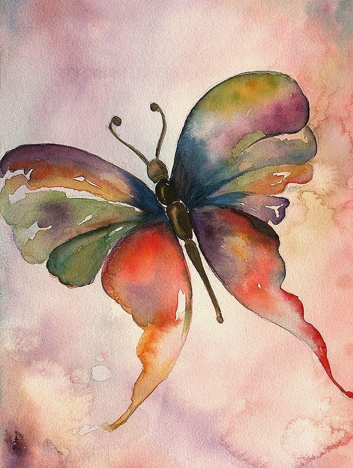Mariposa_technicolor_-_Autor_Tap_De_Liliana_Mazza