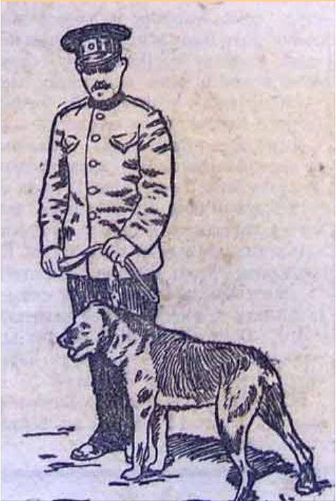 """""""ВИХРЬ (англичанин). Собака российского общества поощрения применения собак к полицейской службе."""" """"Московская Газета"""" заметка: 26 (13) мая 1913 года """"Выставка собак. Очередная выставка собак в Зоологическом саду не блещет богатством экспонатов. Предыдущие были значительно интереснее. Выдающихся же экземпляров совсем не много. Они среди охотничьих собак. Так, здесь великолепный английский сеттер «Джон-Царскосельский» Пупышева, уже получивший массу призов и медалей. Хорош подбор ирландских…"""