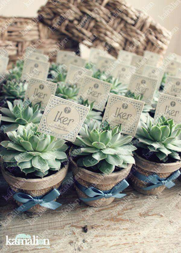 Recuerdos De Bautizo Con Cactus.Pin De Alejandra Bolanos En Details Recuerdos Bautizo Nina