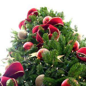 Elige el árbol que mejor vaya con tu hogar ¡Ya viene la Navidad! Elige el árbol que mejor vaya con tu hogar ¡Ya viene la Navidad! Home/Temporadas/Navidad/Elige el árbol que mejor vaya con tu hogar ¡Ya viene la Navidad!  Elige el árbol que mejor vaya con tu hogar ¡Ya viene la Navidad!  Comparte en FacebookComparte en twitter  inNavidad22 days ago0318 Views  El árbol es el centro en torno al cual gira toda la decoración navideña. Pinos y abetos son las opciones clásicas, pero no las…