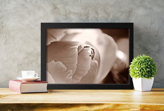 Printable Floral Photography by PlayfulPixieStudio.  A wonderful addition to any decor and, because it is a digital file, this photograph can be printed again and again.  #sepia #macroflower #printalbe