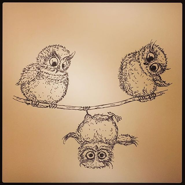 It's all about perspective - looking at a situation with a positive outlook can make all the difference in the world! #theurbangypsy #yegartist #yegmade #yegmadeincanada #owlsofinstagram #justasketch #perspective