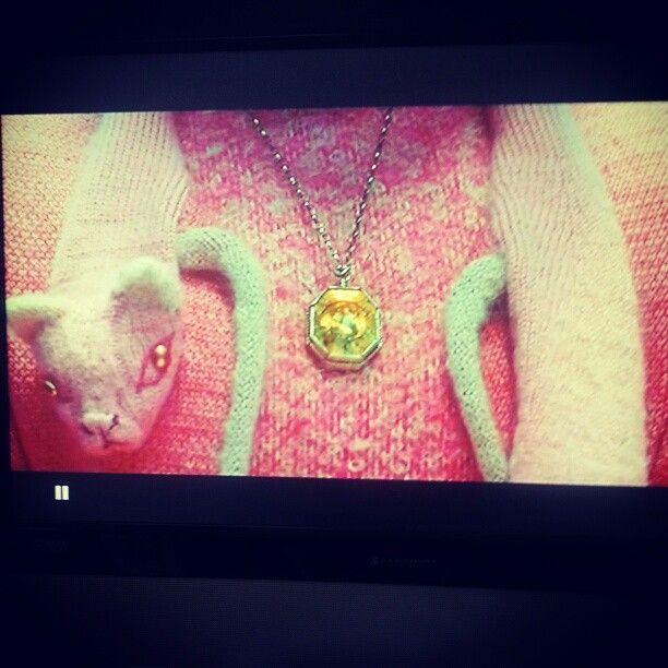 Umbridge's pink cat