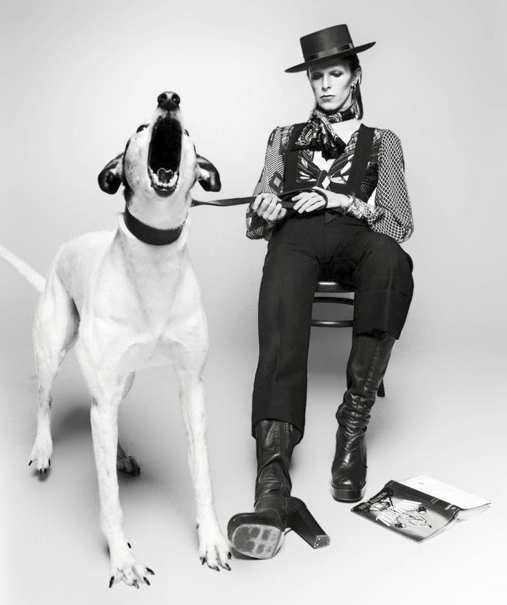 David Bowie by Terry O'Neill.  Love the angle and emotion captured in this.
