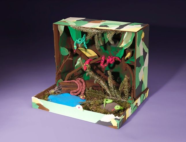 Where do pythons live? What do these notorious snakes look like? Create a fascinating 3-D science project in a recycled box.