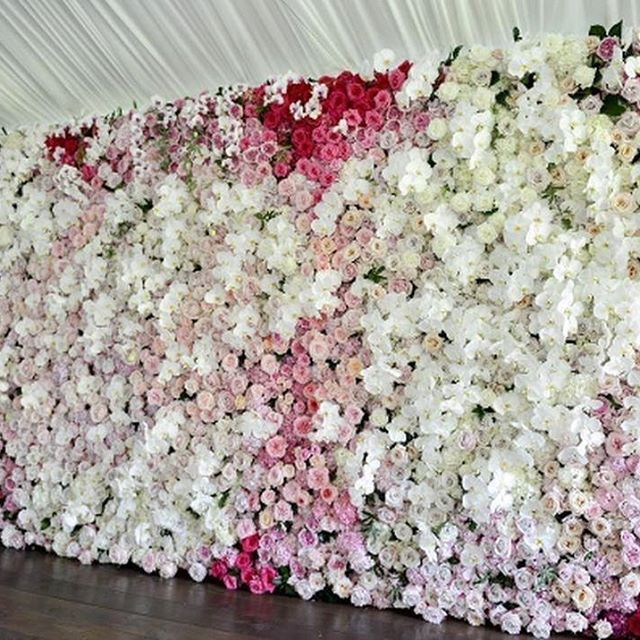 Obsessing over this gorgeous flower wall via @wenfloral. :bouquet::cherry_blossom::hibiscus: #weddinginspiration #floweroftheday #isaidyes #weddingplanning #weddinginspo #bridetobe #love #wedding #weddings #brides #bride