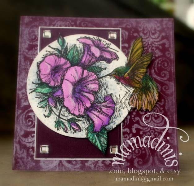 hummingbird and petunias