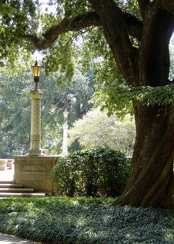 17 Best Images About Baton Rouge On Pinterest Beer